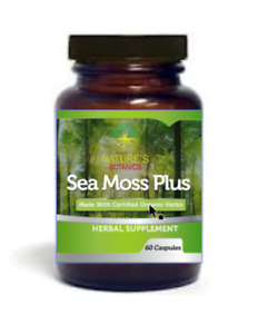 Details about Sea Moss and Bladderwrack Vegetarian Capsules Organic Irish  Moss Sebi SeaMoss