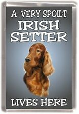 "Irish Setter Dog Fridge Magnet  ""A VERY SPOILT IRISH SETTER LIVES HERE"""