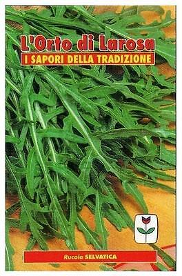 300 Semi/Seeds RUCOLA Selvatica