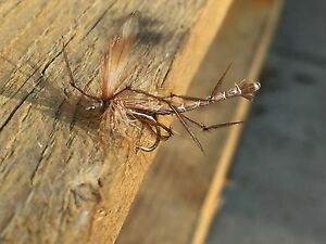 3-FRANKS-traditional-Daddy-Long-Legs-flies-Grayling-trout-river-nymph