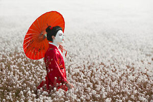 JAPANESE-GEISHA-CANVAS-WALL-ART-HOME-DECOR-PICTURE-PRINT-FRAMED-20X30-INCHES