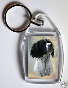 English-Springer-Spaniel-Key-Ring-By-Starprint-No-4