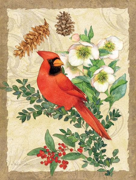 Julie Paton  Holiday Cardinal Keilrahmen-Bild Leinwand Blaume Vogel Pflanze Natur
