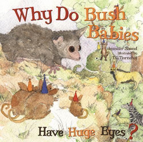 Why Do Bush Babies Have Huge Eyes? by Jennifer Shand (2014 ...