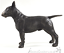 Cold-Cast-Bronze-English-Bull-Terrier-lover-gift-sculpture-ornament-figurine thumbnail 4