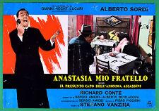 T69 FOTOBUSTA ANASTASIA MIO FRATELLO ALBERTO SORDI RICHARD CONTE STEFANO VANZINA