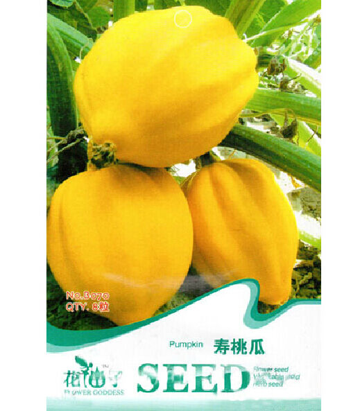FD1349 Peach Melon Pumpkin Seed Delicious Healthy Fruit Seed ~1 Pack 8 Seeds~