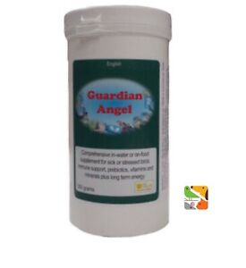300g-Guardian-Angel-Sick-Pet-Bird-Probiotic-Supplement-Immune-Support-amp-Recovery