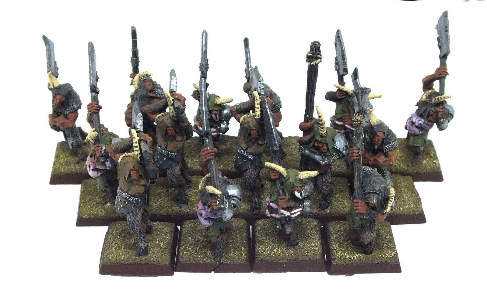 Warhammer Fantasy - Beastmen Besteigor herd (painted) - 28mm