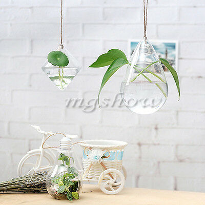 Terrarium Hanging Glass Geometry Hydroponic Plants Flowers Planter Vase Pot Home