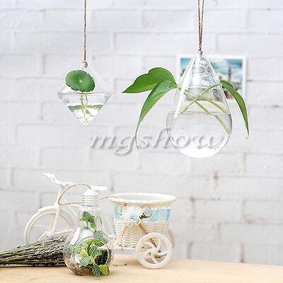 Terrarium Hanging Glass Geometry Hydroponic Plants Flowers Planter Vase Pot Home