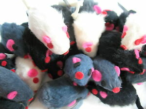 10-ZANIES-FURRY-MICE-cat-toy-kitten-toys-REAL-FUR-MICE