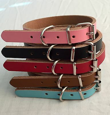Pet Dog Puppy Collar Leather Extra Small, Small, Medium, Large Pink Blue strong