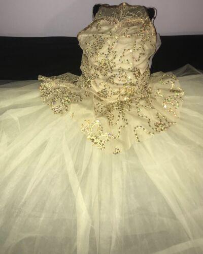 ballet dress costume