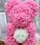 thumbnail 9 - 25cm 10inch Flower Rose Bear Gift Box option Mother's Day Valentine Anniversary