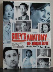 DVD-Box (4 DVDs) Grey´s Anatomy - Die jungen Ärzte - 2. Staffel Teil 1 - FSK 12