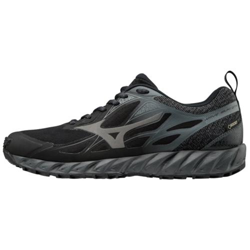 Schuhe DA TRAIL RUNNING DA UOMO MIZUNO WAVE IBUKI GTX gore-tex