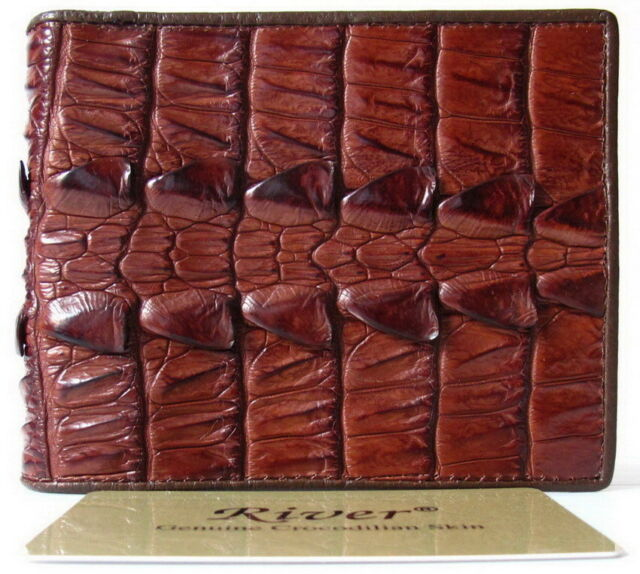 b627dc77d17e 100 Belly Genuine Crocodile Leather Men's Bifold Wallet Shiny Brown