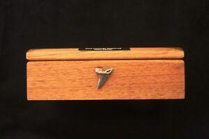Shark Tooth KR Oak Jewellery Box 6x4 Photo Window FREE Engraving Sea Life Gift