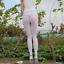 Mesh-Transparent-Leggings-See-Through-Pencil-Pants-Erotic-Lingerie-Club-Wear thumbnail 18