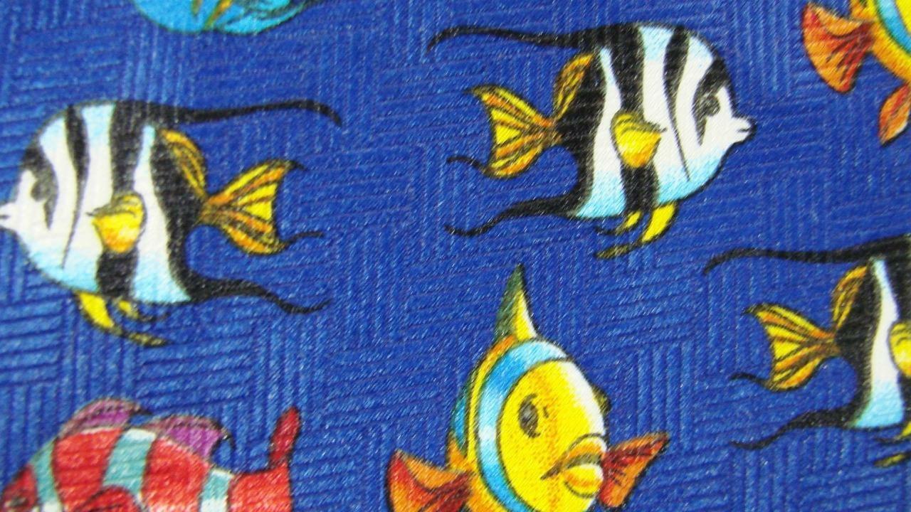 Sucht Bunt Tropischer Fisch Blau Gelb Rot Polyester Krawatte MNO1319B #V16