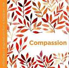 Compassion: Effortless Inspiration for a Happier Life by Dani Dipirro (Hardback, 2016)