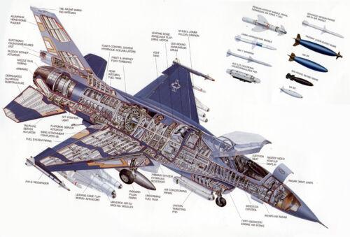 F-16 FALCON SWIRL vel  INSIGNIA USAF 93d Fighter Squadron 93 FS MAKOS SHARK
