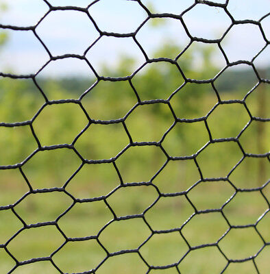 Galvanized PVC Coated Steel Animal Fence 2/' x 100/' Welded Wire Fencing 19 ga