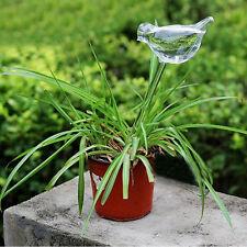 Self Watering Aqua Globes Small Plant Automatic Bulbs Bird Clear Glass Sprinkler