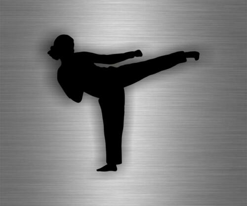 Sticker decal art wall car moto biker funny karate room sport martial arts r3
