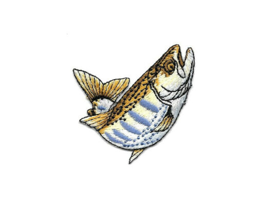 Embroidered Iron On Patch Lake Fishing Sports Brook Trout Trout Fish