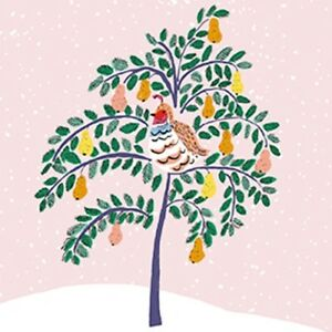 Pack-of-8-Mini-Partridge-Pear-Tree-Shelter-Charity-Christmas-Cards-Xmas-Card-Pac