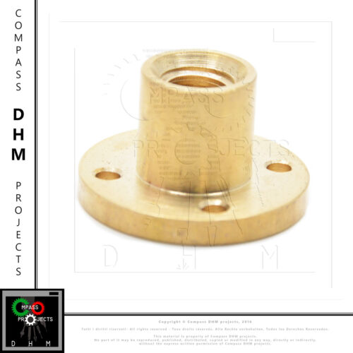 Chiocciola vite trapezia Ø10 mm pitch 2 mm 1 principio boccola ottone 3D CNC