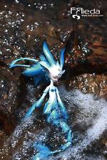 Frieda ELF 35cm LIMITED mermaid fairy DollZone mini YO-SD pet BJD doll
