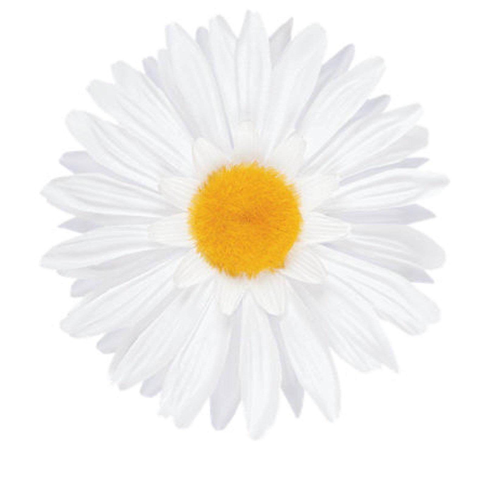 Electra Electra Electra manillar flor Daisy Dahlia Flower bicicleta manillar flor decoración m. clip 6596c9