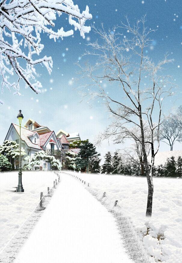 3D 3D 3D Schnee Baum Haus  97 Tapete Wandgemälde Tapete Tapeten Bild Familie DE Summer | Wonderful  7b8d50