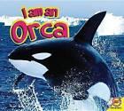 I Am a Orca by John Willis (Paperback / softback, 2016)