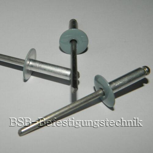 50 Großkopf Blindnieten 5x18 Kopf 14mm  Alu//Edelstahl  ähnl RAL7040