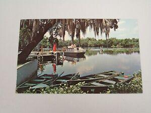 J1132-Postcard-Scene-on-the-Beautiful-St-Johns-River-Blue-Springs-Park-Florida