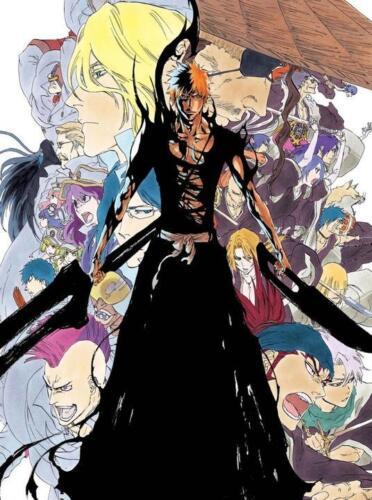 "Bleach Ichigo Kurosaki Anime Poster 13x20/"" 20x30/"" 24x36/"" Art Silk Print #1"