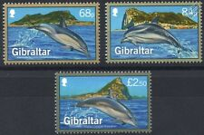2014 DOLPHINS of GIBRALTAR Stamp Set (Common / Striped / Bottlenose Dolphin)