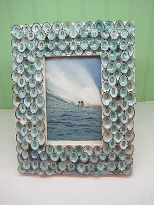 Handmade Natural Blue Limpet Seashell Picture Frame For Weddings Gifts Photos