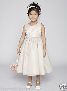 BNWT-BHS-Age-10-11-amp-11-12-Champagne-Satin-Chiffon-Butterfly-Bridesmaid-Dress