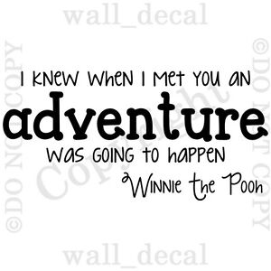 Winnie The Pooh I Knew When I Met You Adventure Vinyl Wall Decal