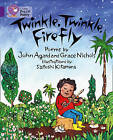 Collins Big Cat: Twinkle, Twinkle, Firefly Workbook by HarperCollins Publishers (Paperback, 2012)