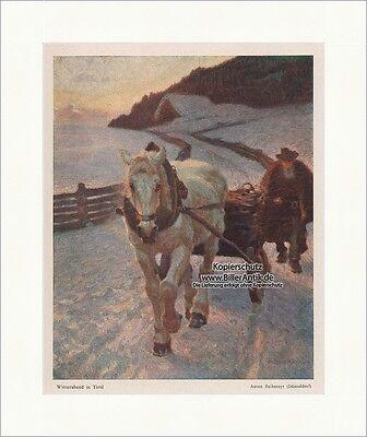 Sporting Winterabend In Tirol Anton Reibmayr Düsseldorf Pferd Schlitten Eis Jugend 1253 Mit Den Modernsten GeräTen Und Techniken