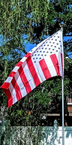 USA Civil Peace Flag 3 x 5 American Flags 90 x 150 cm Banner 3x5 ft Drapeau Etats-UNIS Civil Paix AZ FLAG
