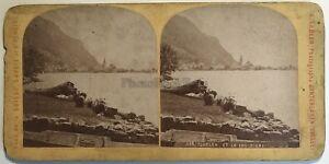 Suisse Flüelen E Il Lac Uri Fotografia Gabler Stereo Vintage Albumina