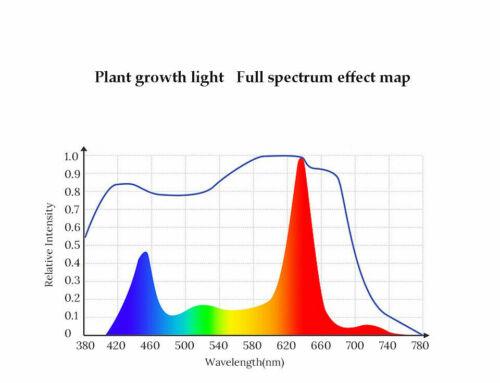 8000W LED Grow Light Hydroponic Full Spectrum Plant Flower Growing Bloom Lamp US