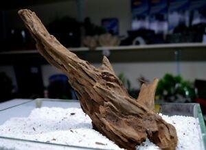 Mangrove-Root-20-33-bogwood-driftwood-nano-aquariums-vivariums-like-mopani-wood